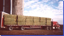 Hay by the semi-load